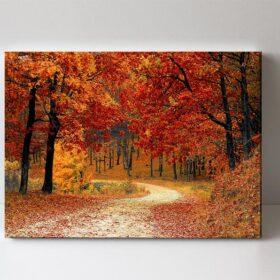 fotoobraz podzim